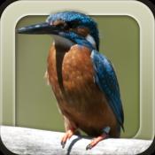 App Icon: Natur erleben