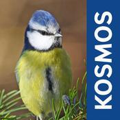 App Icon: Gartenvögel 2.2