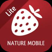 App Icon: Wilde Beeren und Kräuter 2