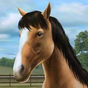App Icon: My Horse