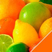 App Icon: Vitamine & Mineralien 1.3