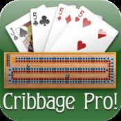 App Icon: Cribbage Pro Online!