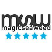 App Icon: Magicseaweed Surf Forecast 4.4.3