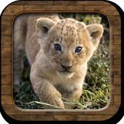 App Icon: Tierstimmen! 1.1.1